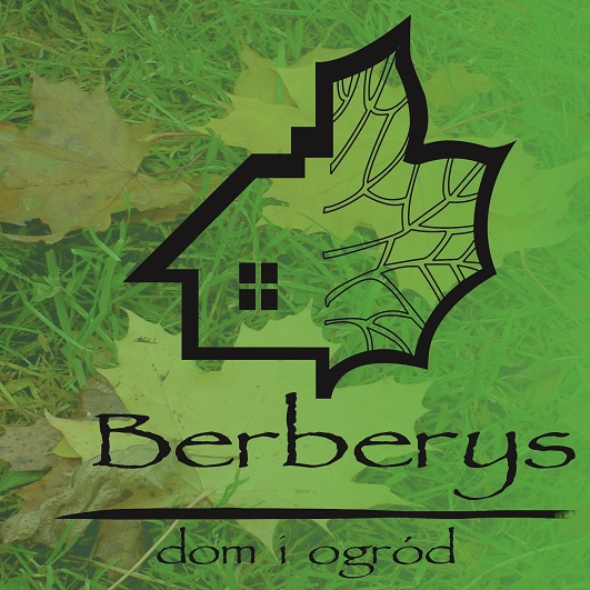 logo berberys