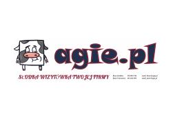 agie logo